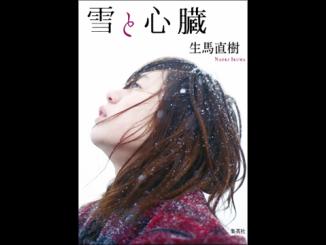 『雪と心臓』表紙